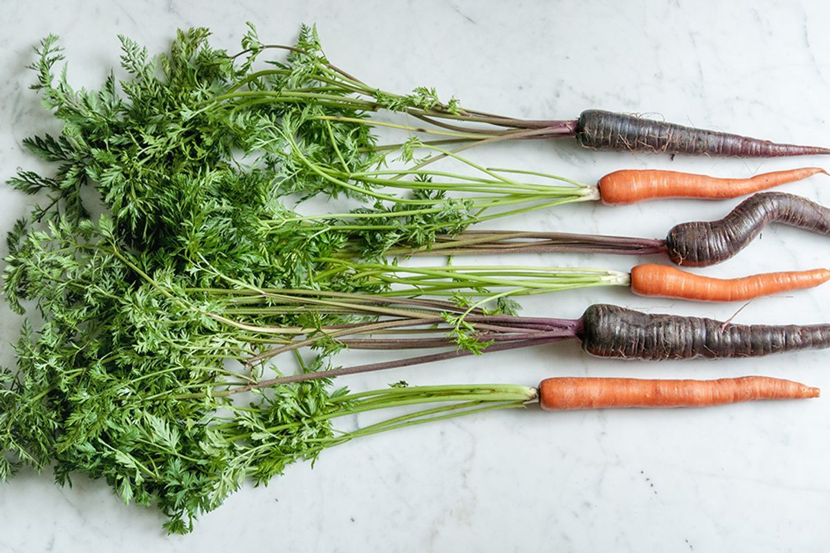 Are Purple Carrots Healthier Nutrition Benefits And Uses Ecowatch