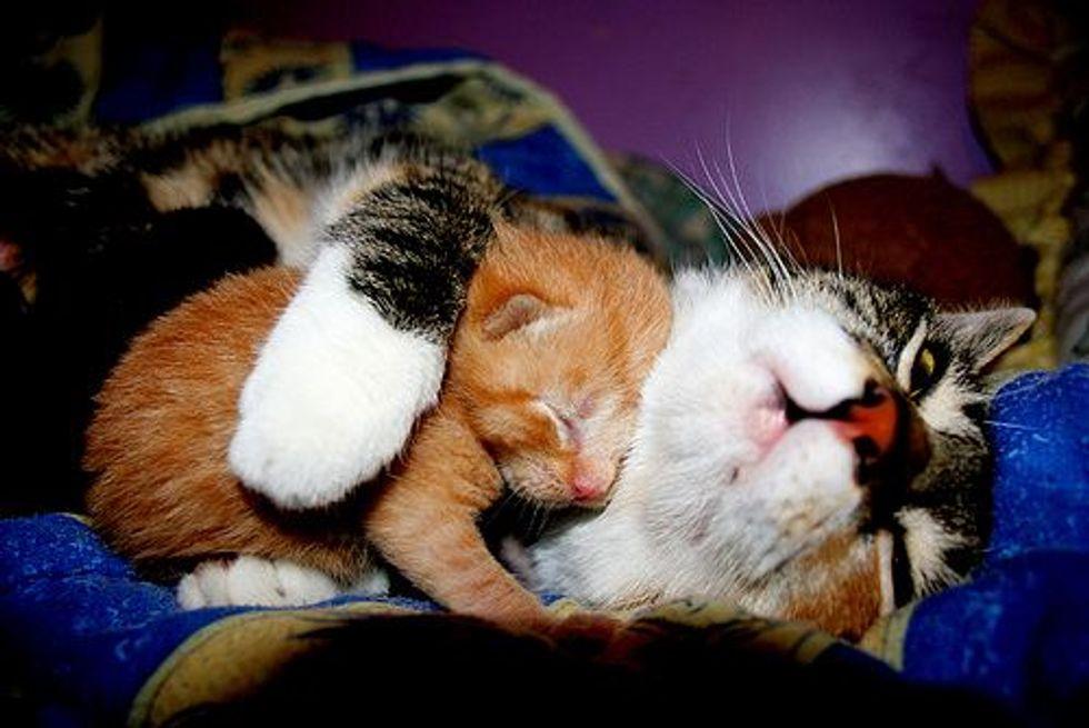 Hugs and Love