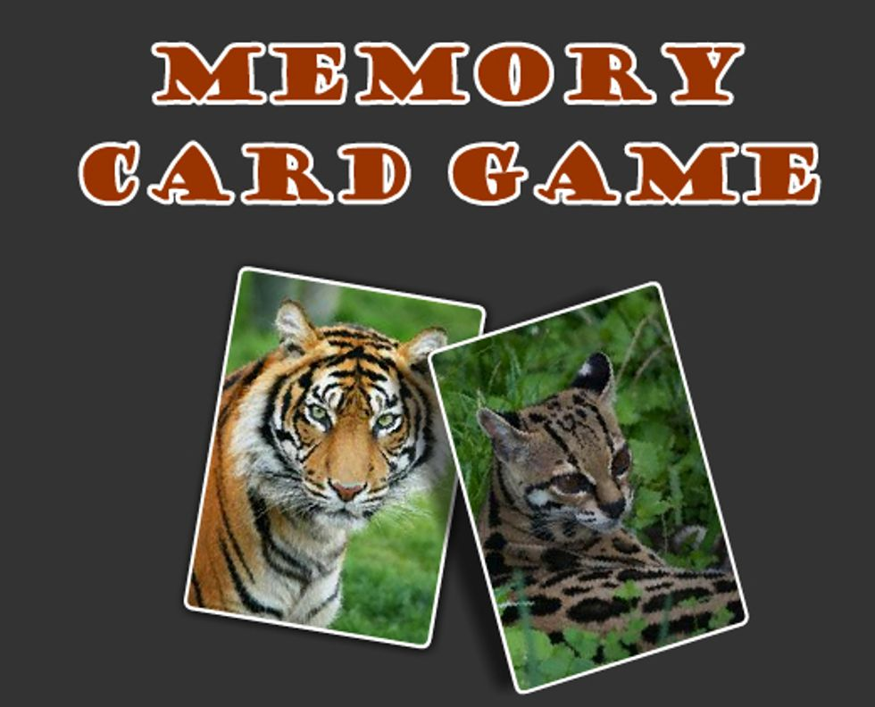 Wild Cats Memory Card Game