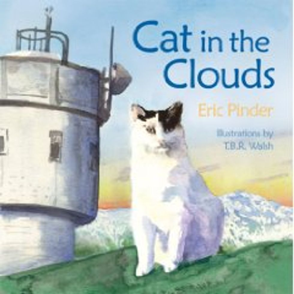 """New Hampshire Mountain Mascot Cat Dies"""