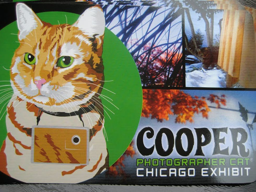 Cooper Magnet Giveaway Contest
