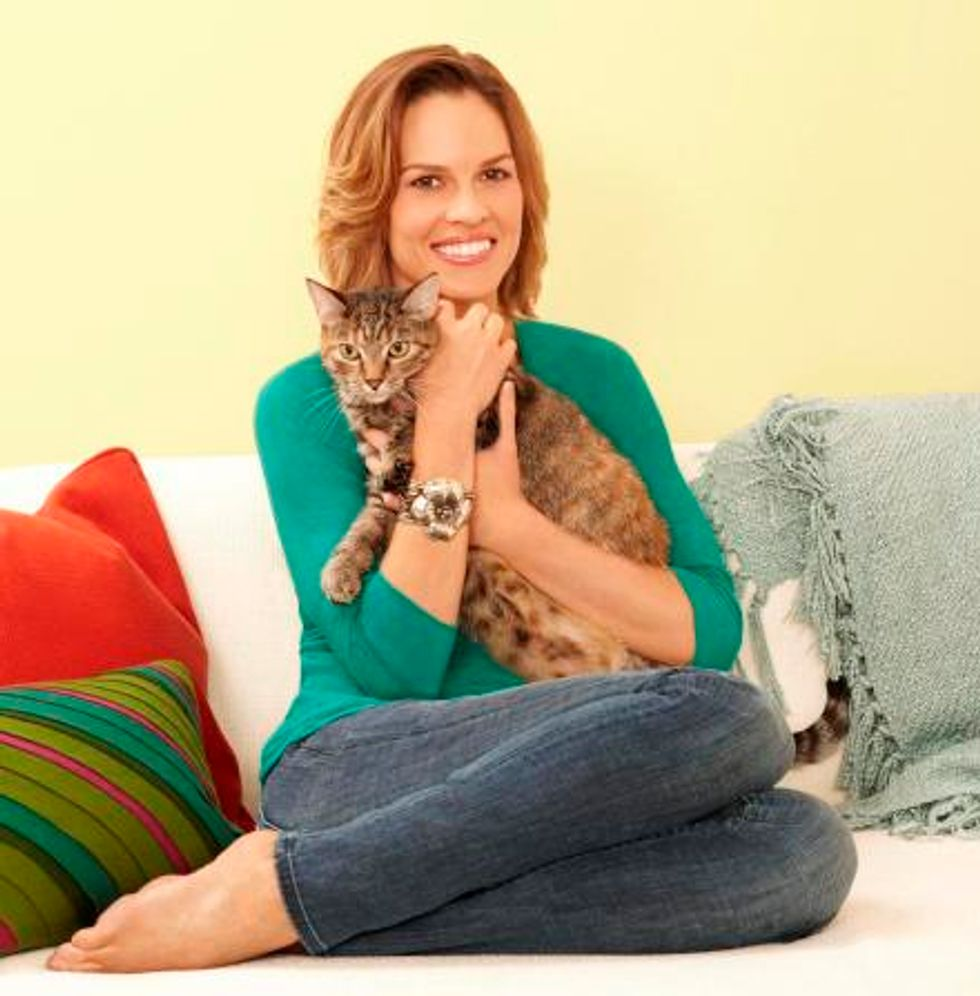 Hilary Swank Will Speak with Love Meow About Animal Adoption