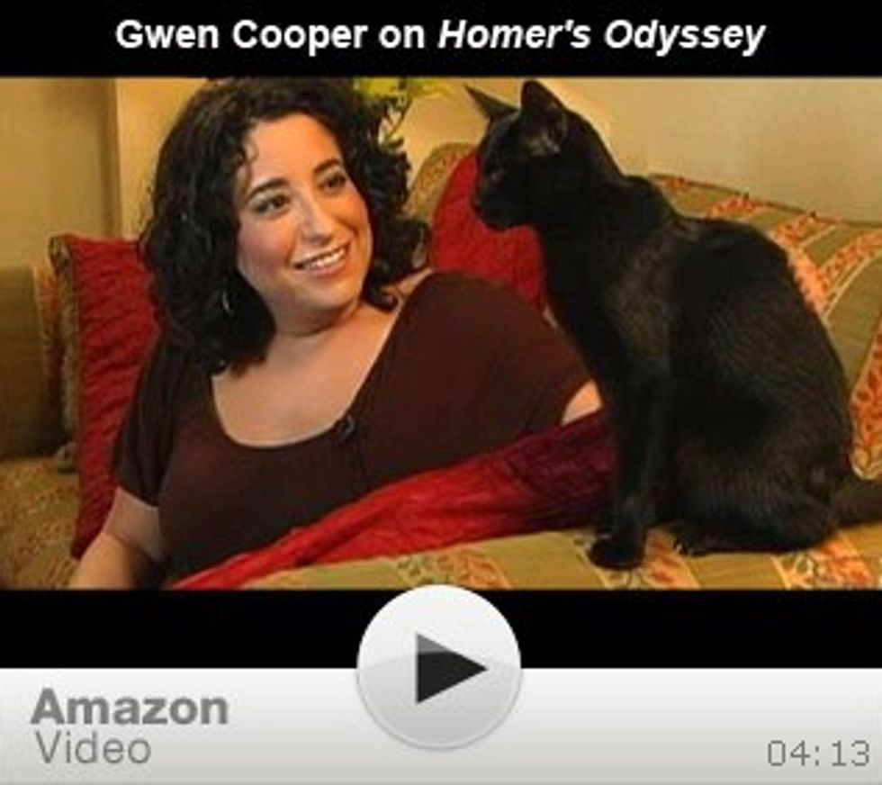 A Blind Cat, Homer and His Odyssey