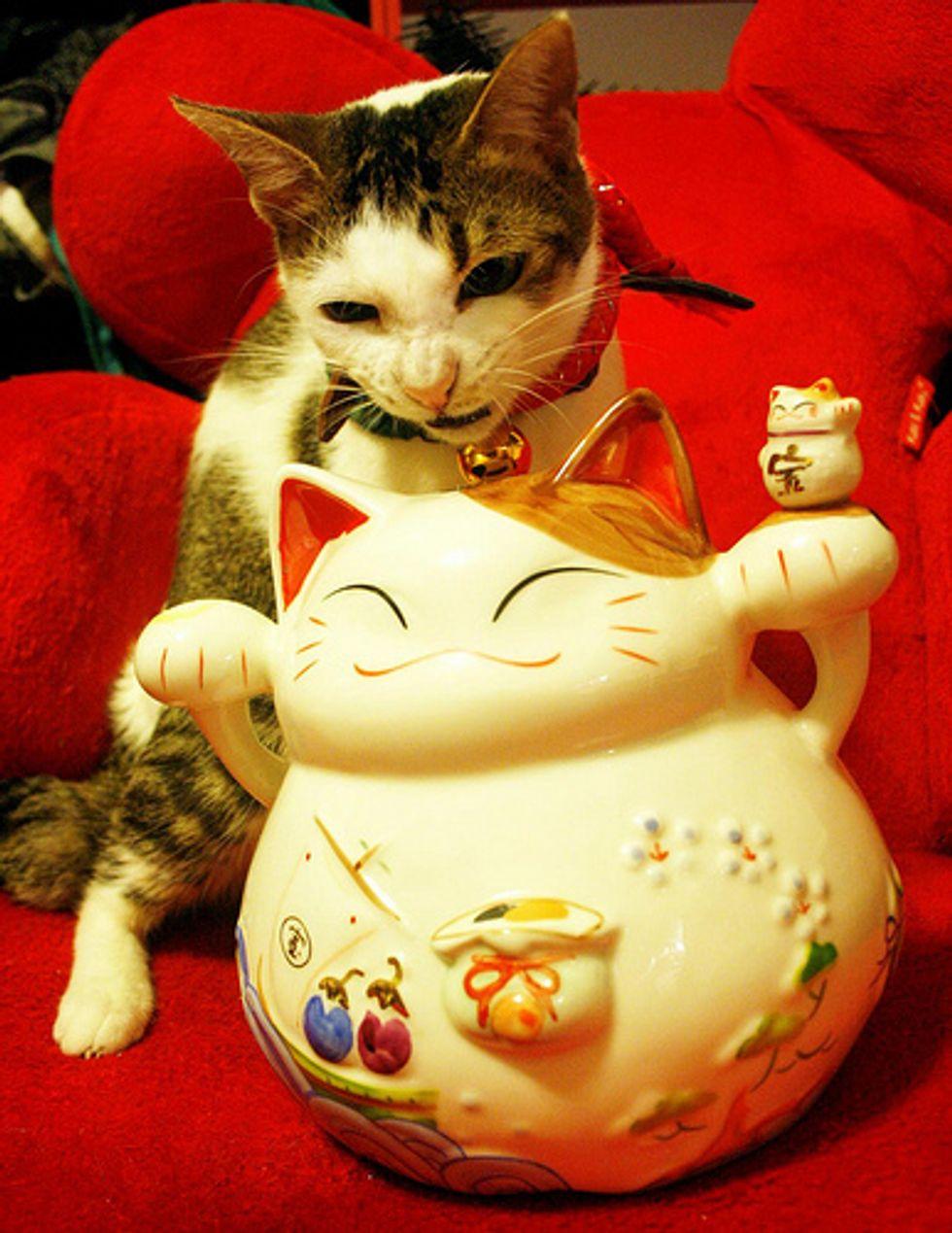 Jingle Cats