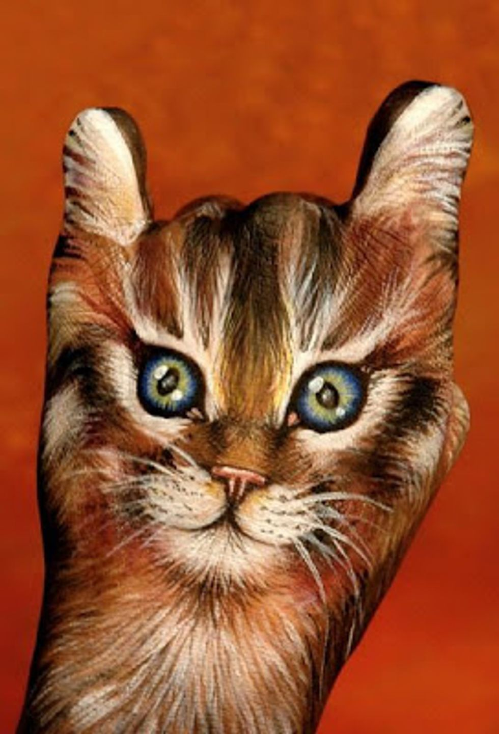 Amazing Cat Hand Painting Art