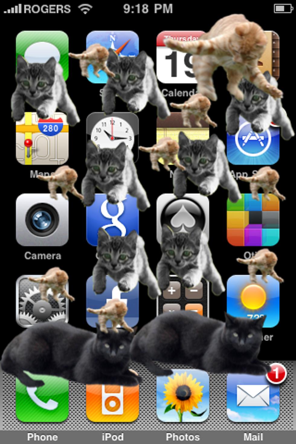 CatPaint Cat iPhone App