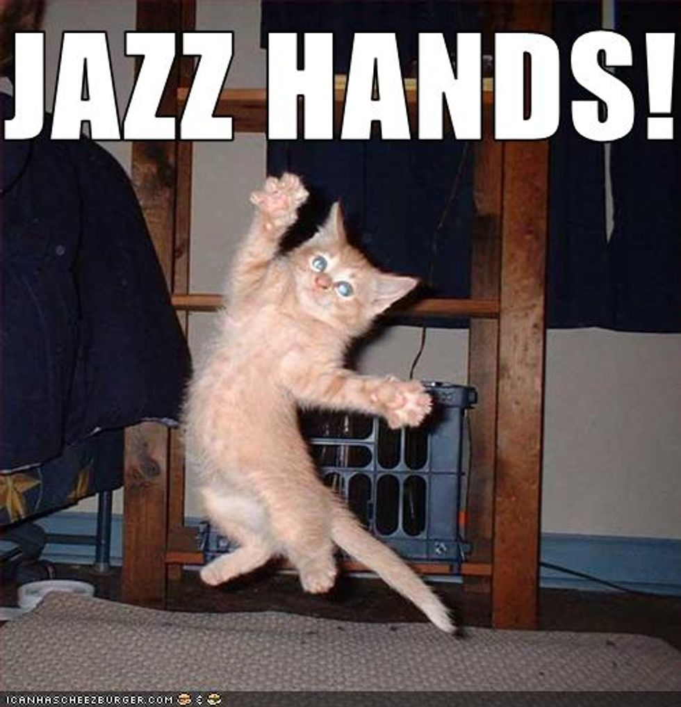 Lolcat Cat and Kitten Jazz Hands Edition