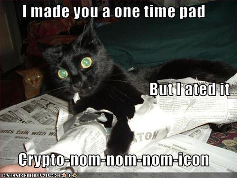 Cheezburger Time Kitten Says Nom Nom