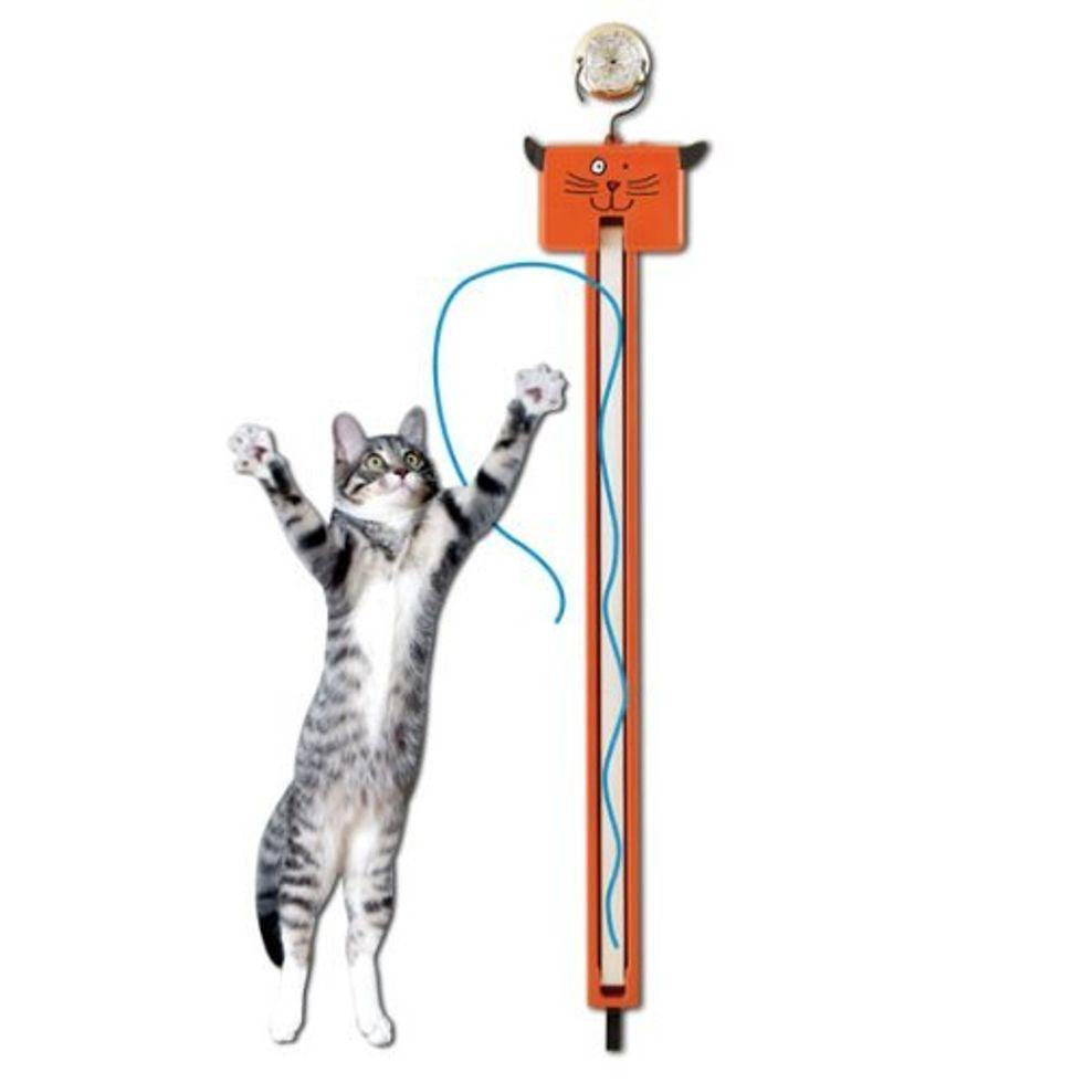 Fun Toy Fling ama String