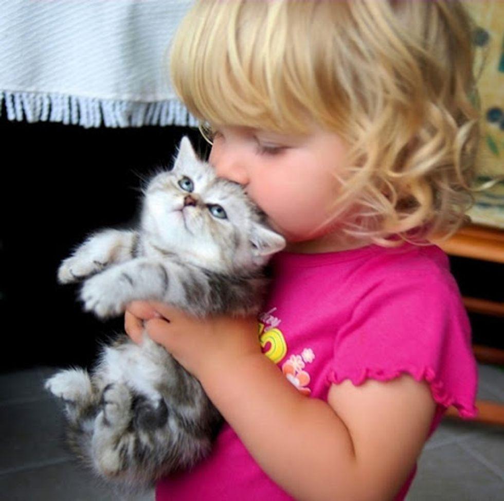 Girl Kisses Kitten Cute Cat Picture