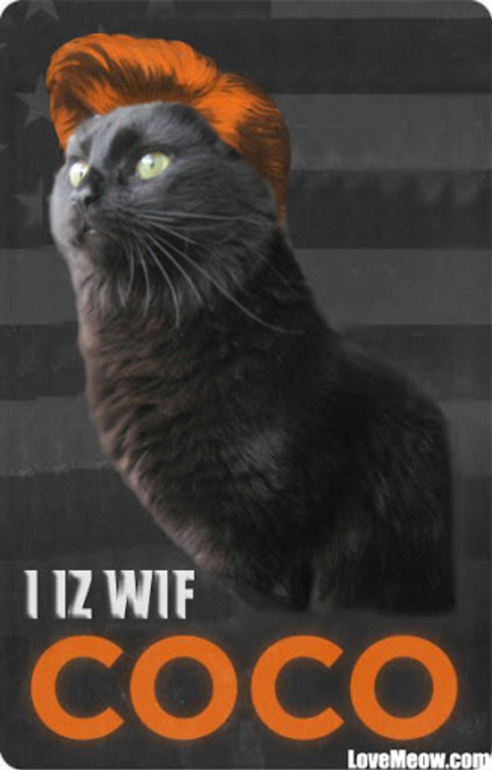 I IZ WIF COCO
