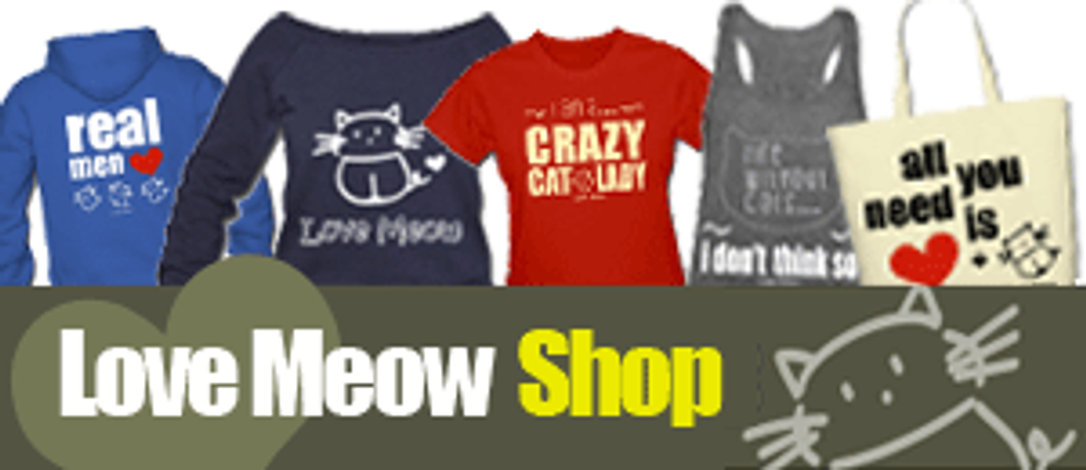 Save Meow Project