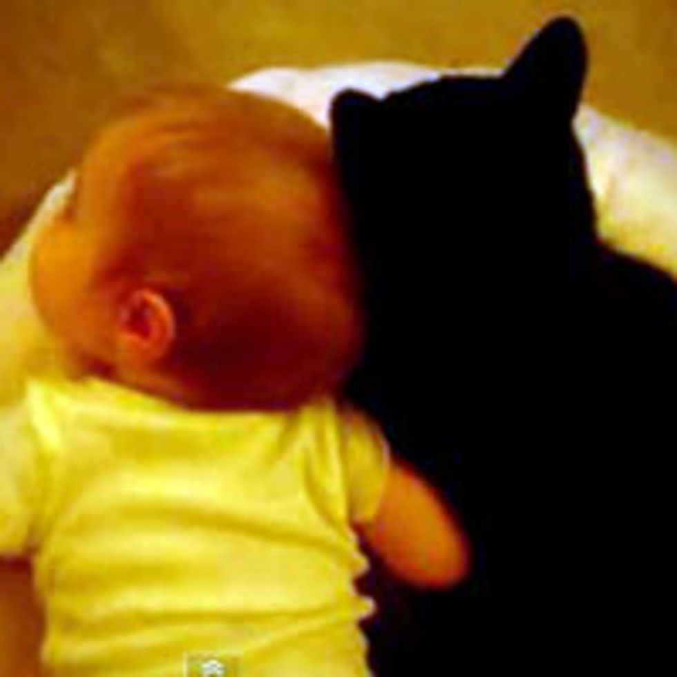 Tuxedo Cat and His Little Human Buddy