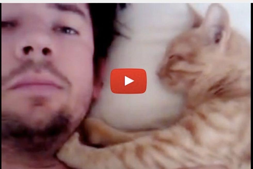 Kitty Kneading Human Dad Awake