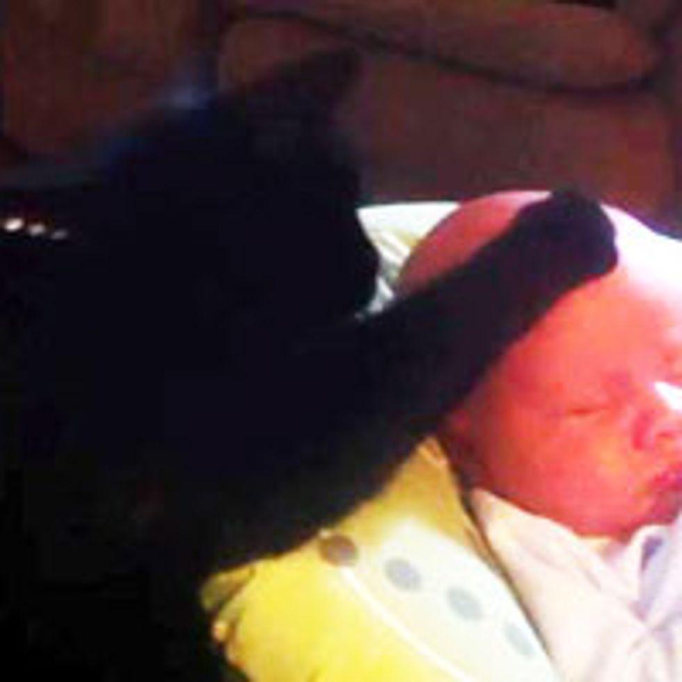 Kitty Soothing Hooman Baby to Sleep