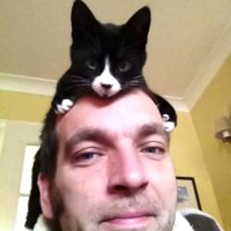 Kitty Impersonates a Hat