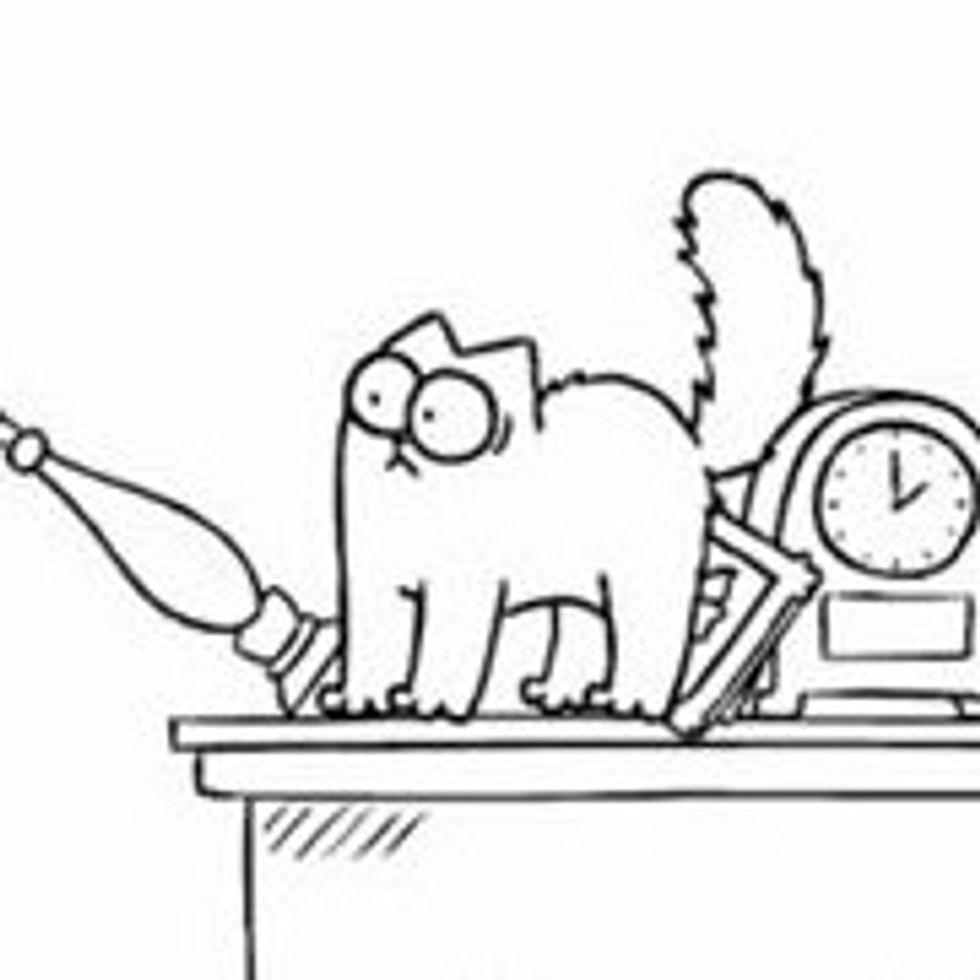 Simon's Cat in 'Shelf Life'
