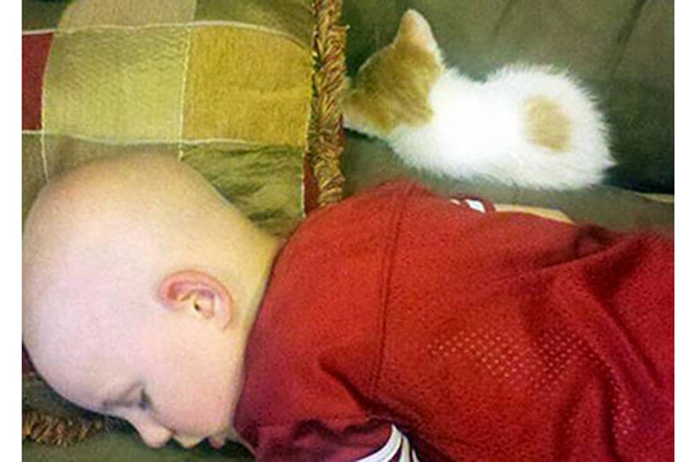 Kitty Gives Boy with Cancer New Hope