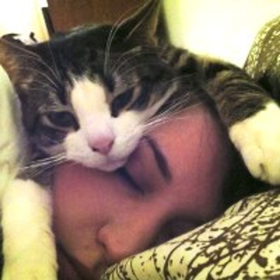 Sleepy Caturday: This is How Kitty Sleeps at Night