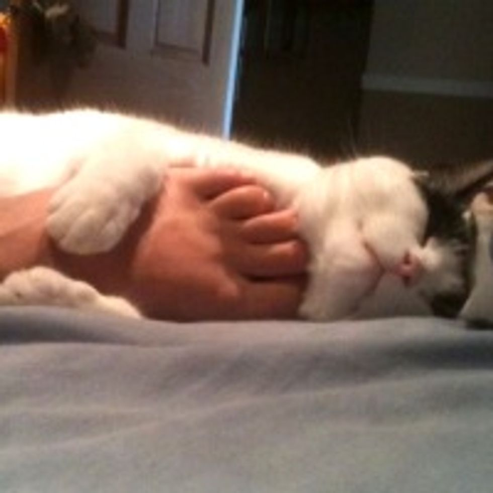 Warm & Fuzzy Foot Hugger
