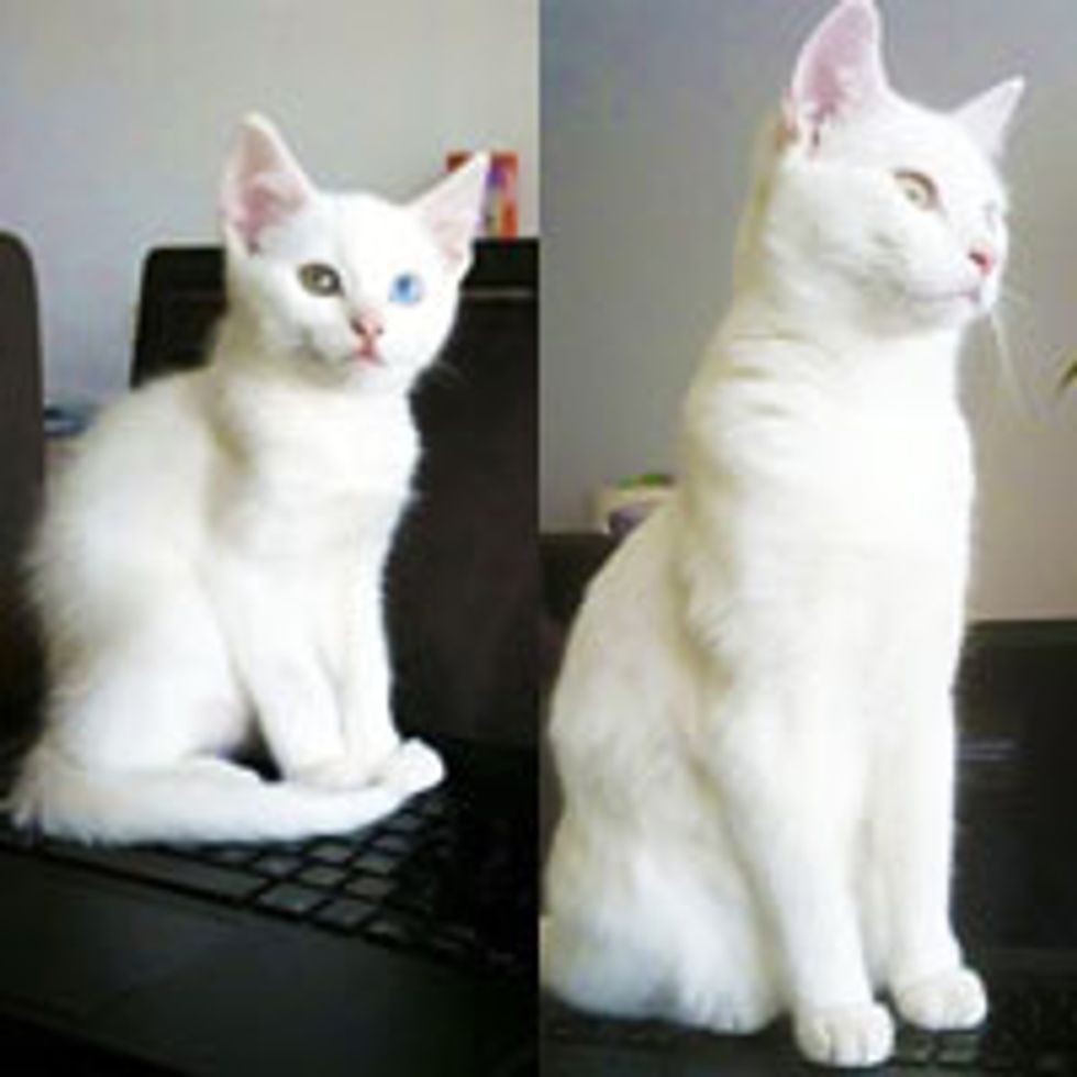 Then & Now: If It's Warm, I Sit