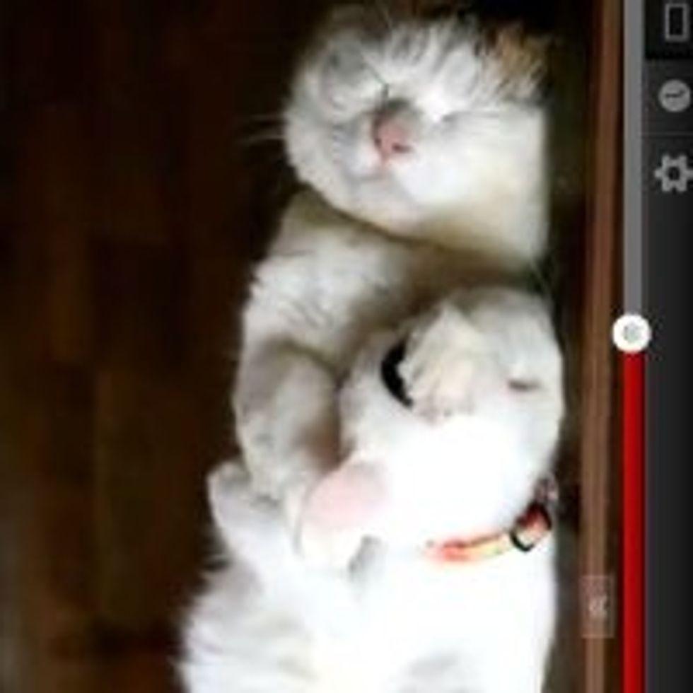 Sleeping in the Hallway