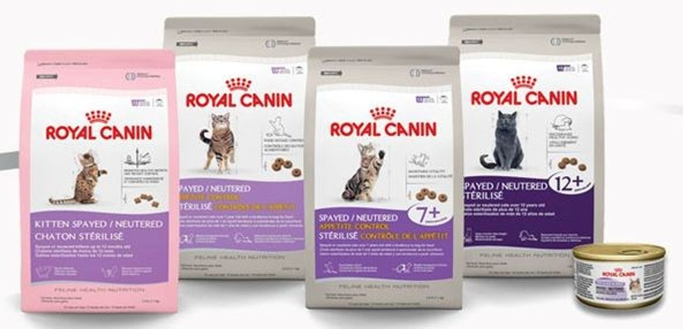 Spread the Word of Spay and Neuter with Royal Canon, and Get Free Food