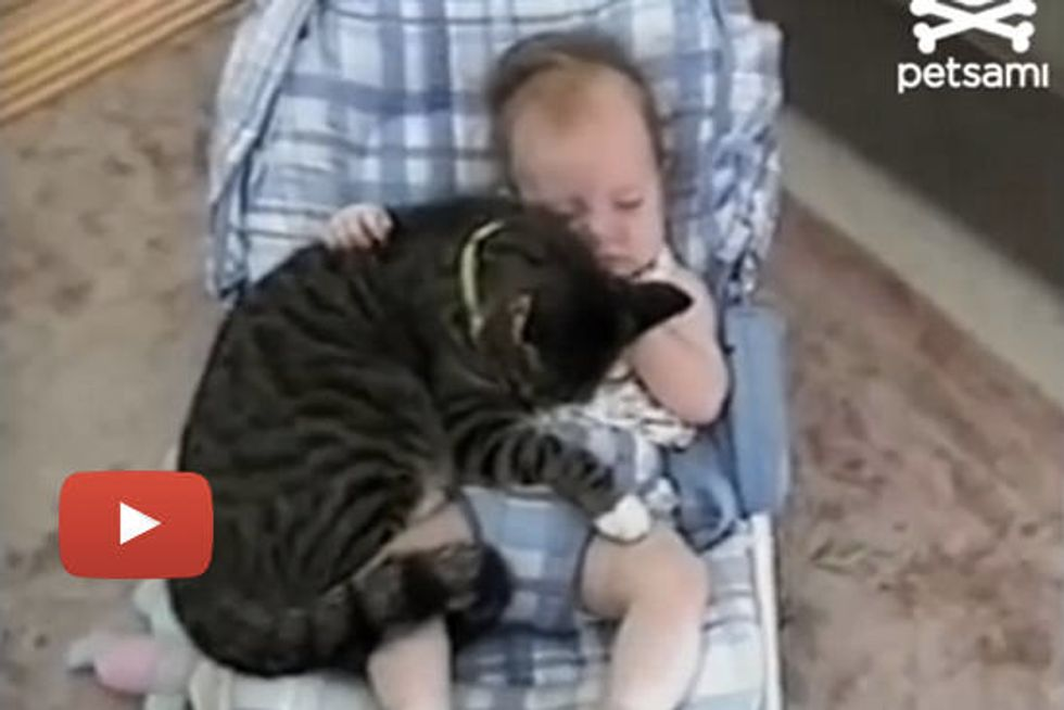 Baby and Cat Cuddle in Crib