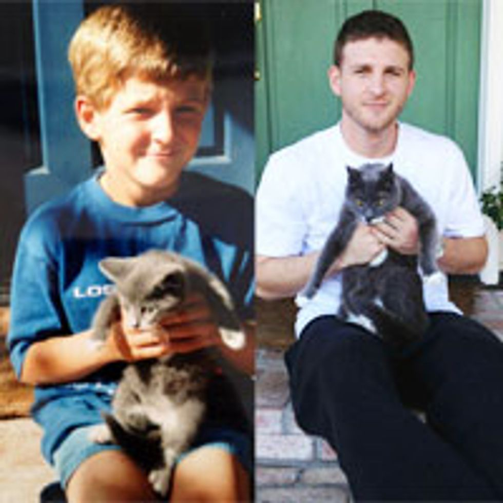 Life with Cats: Then and Now
