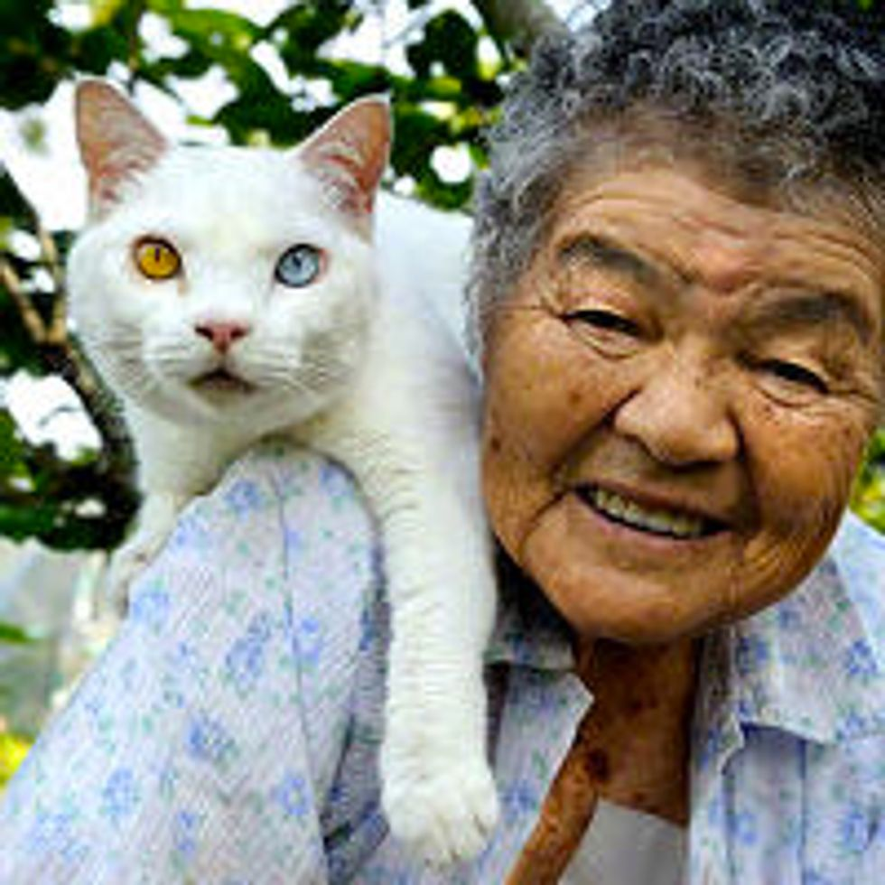 Chronicle of 87-Year-Old Grandmother and Her Beloved Cat