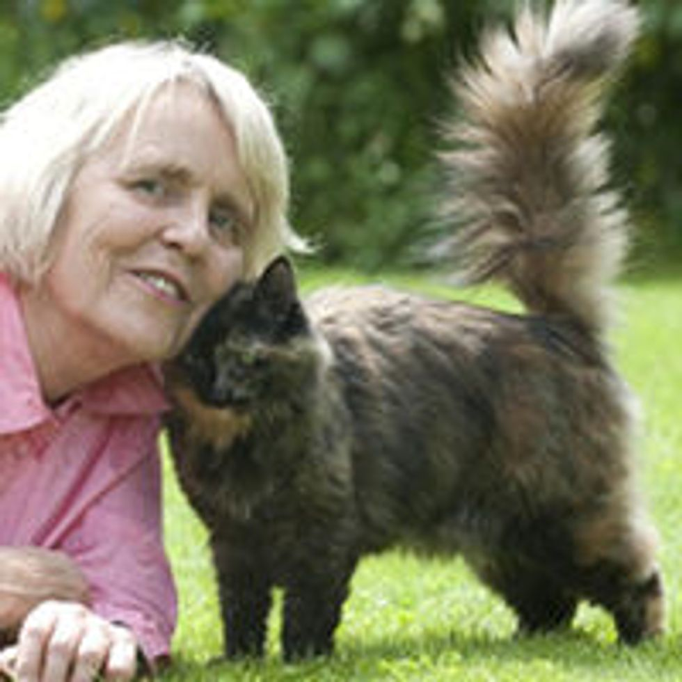 Very Timid Rescue Cat Saved Woman in Her Darkest Time
