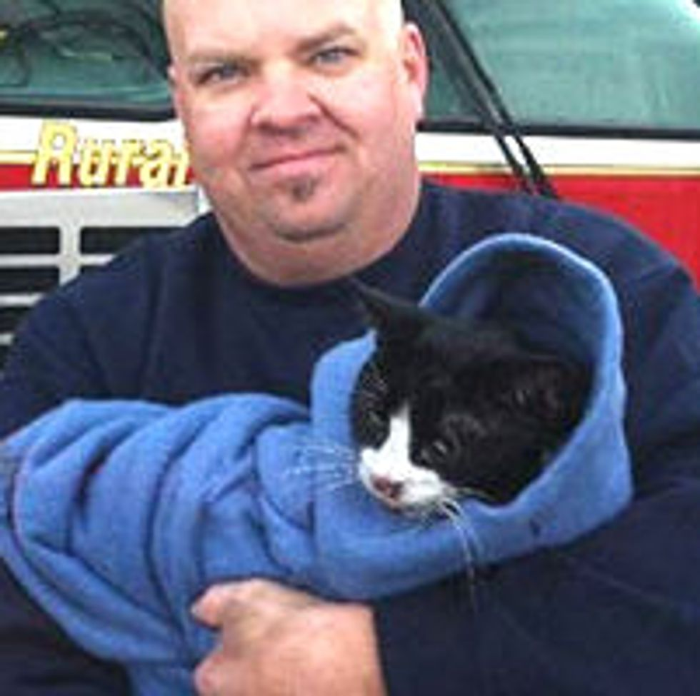 Paramedic Revives Cat Rescued from Fire