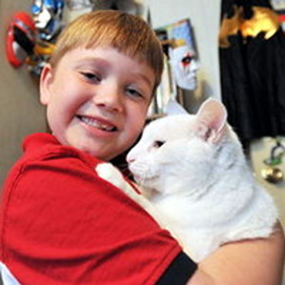 Foster Cat Saves Family's Home from Fire