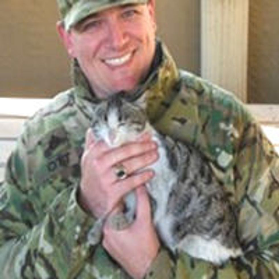 Soldier Brings Rescue Afghan Stray Cat Home