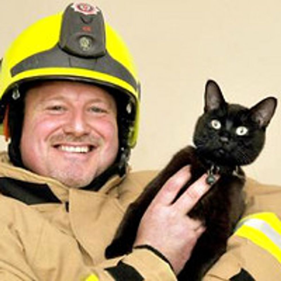 Firefighter Finds His Beloved Missing Cat At Scene Of Fire