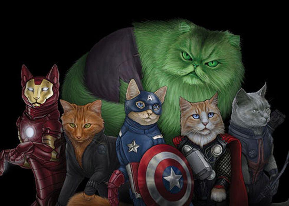 Cat Supurrheroes