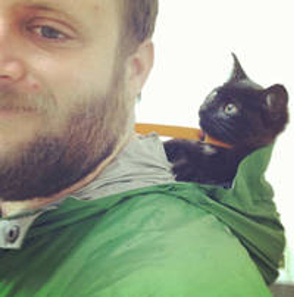 Man Saves Kitten From The Woods And Gives Him A Home