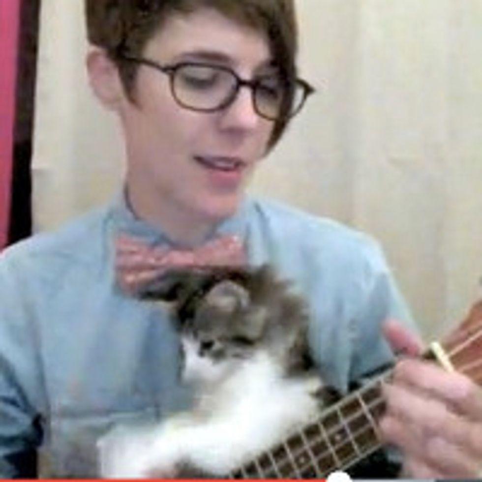 Foster Kitten Helps Play Nerdy Love Song