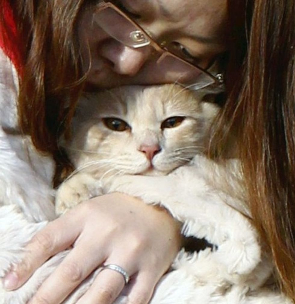 Woman Holds Beloved Cat at Evacuation Center in Fukushima
