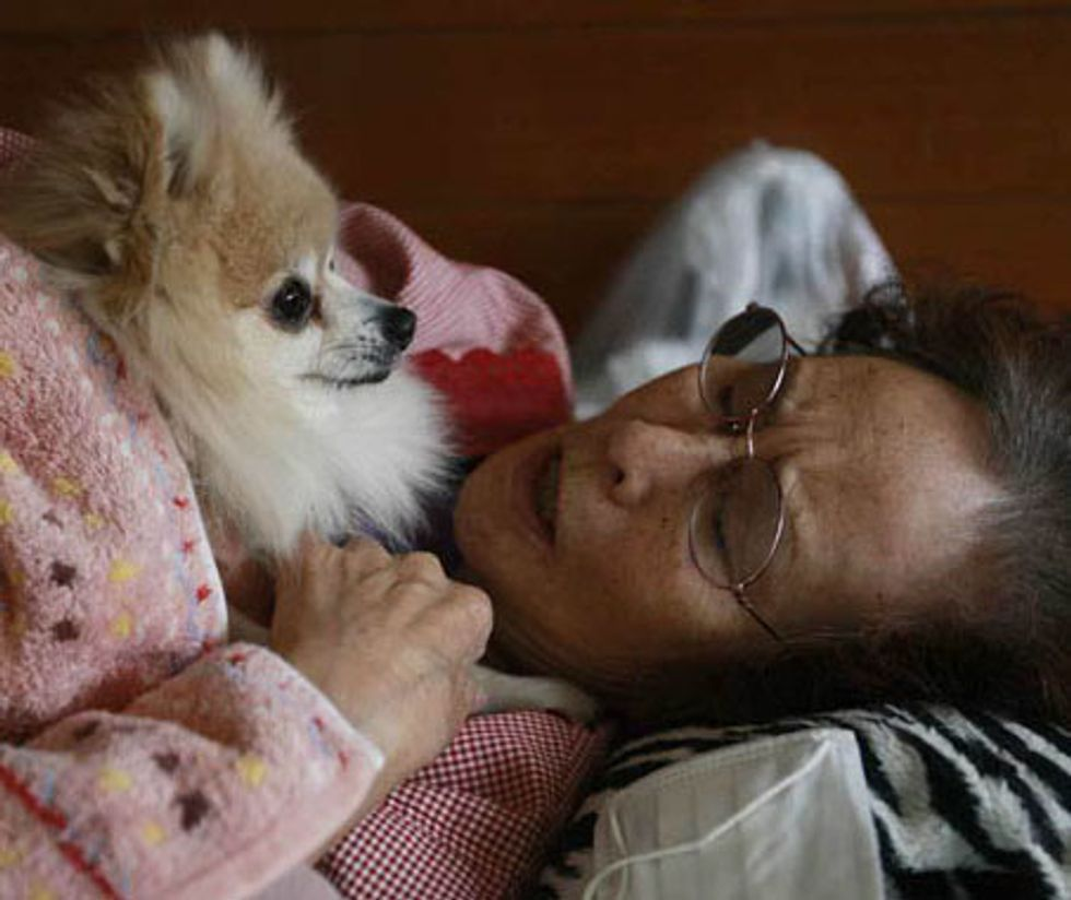 23 Photos of Dogs and Owners Sticking Together After Devastating Earthquake and Tsunami