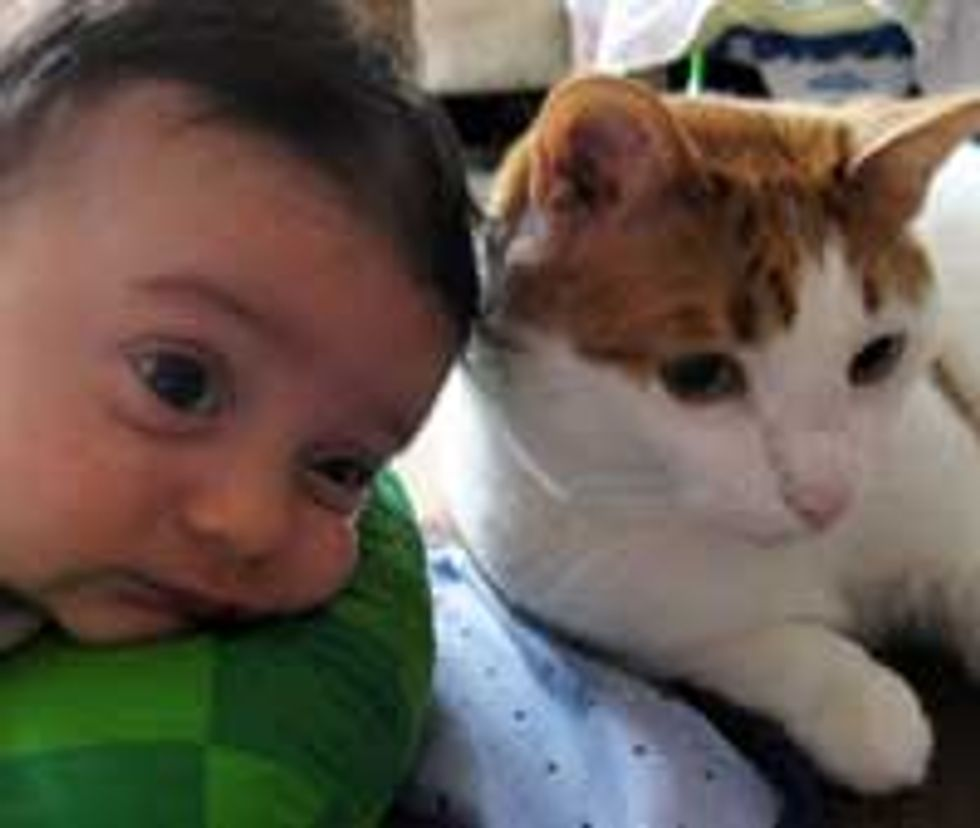 Friendship from Birth - Kitty & Baby