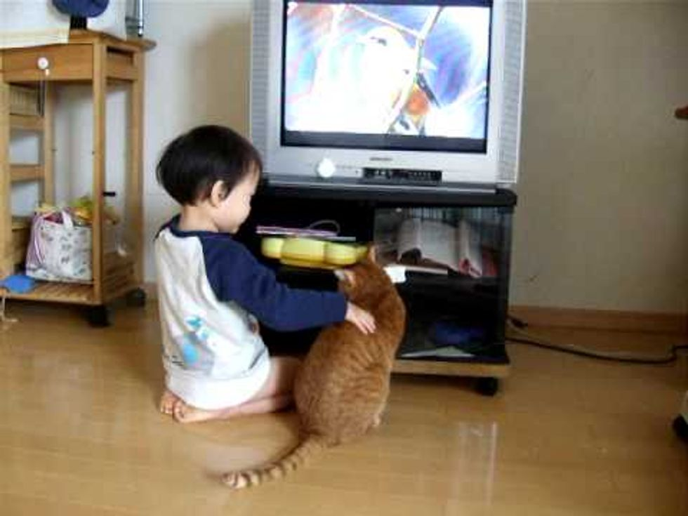 Kitty Shares TV with Little Toddler