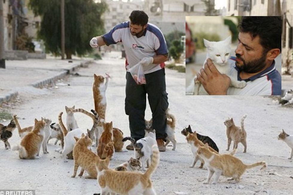 Ambulance driver of Aleppo spends savings on feeding stray cats as civil war rages around him