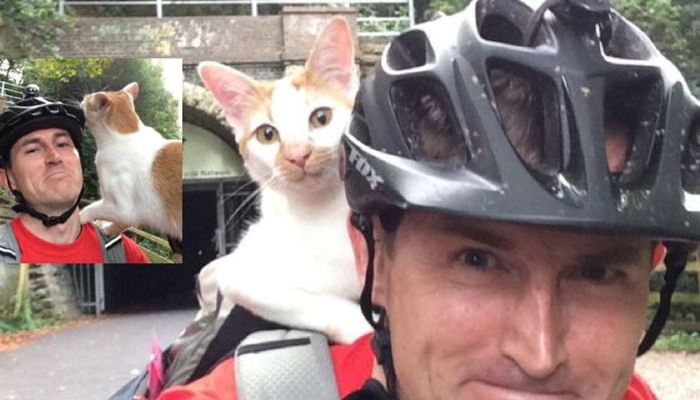 Cat Greets Cyclist By Climbing On His Backpack