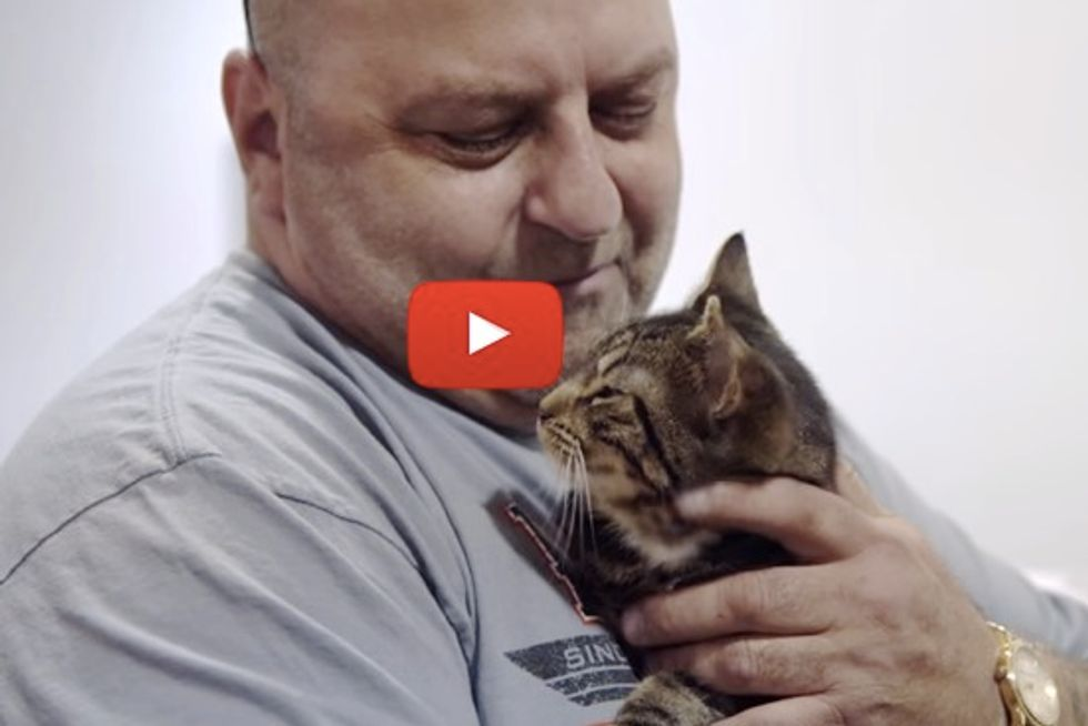 Man Finds The Purrfect Gift For His Birthday