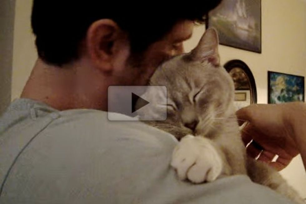 Cat Loves Getting Hugs From His Favorite Person