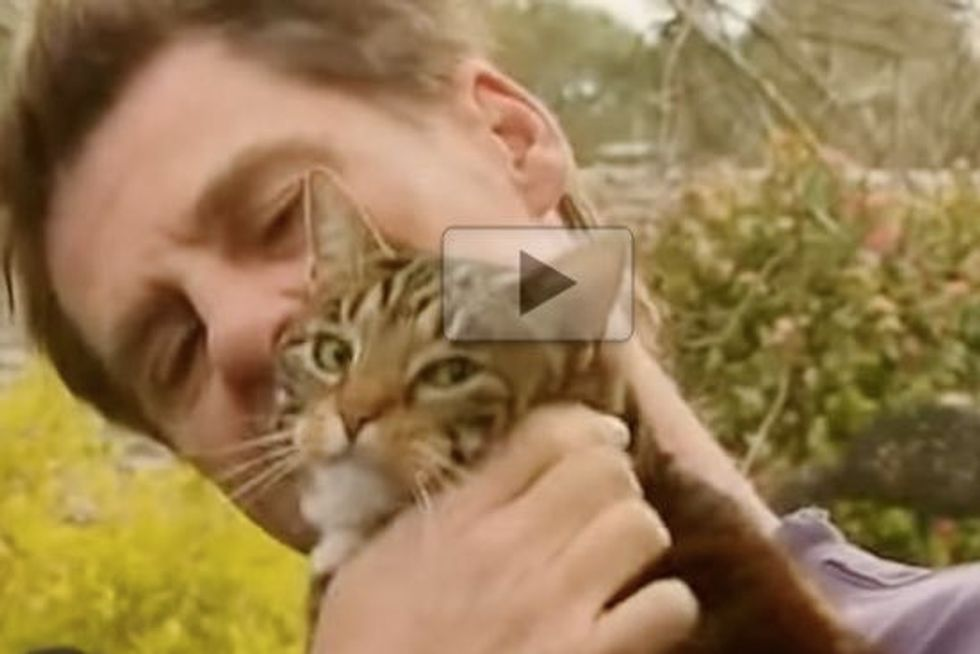 Sally The Hero Cat Saves Man From House Fire
