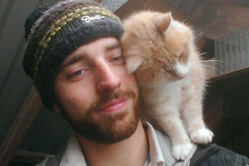 Affectionate Shoulder Cat