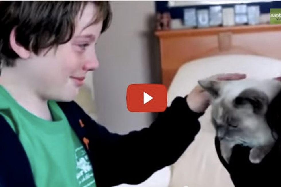 Kids cry tears of joy after mom finds missing cat