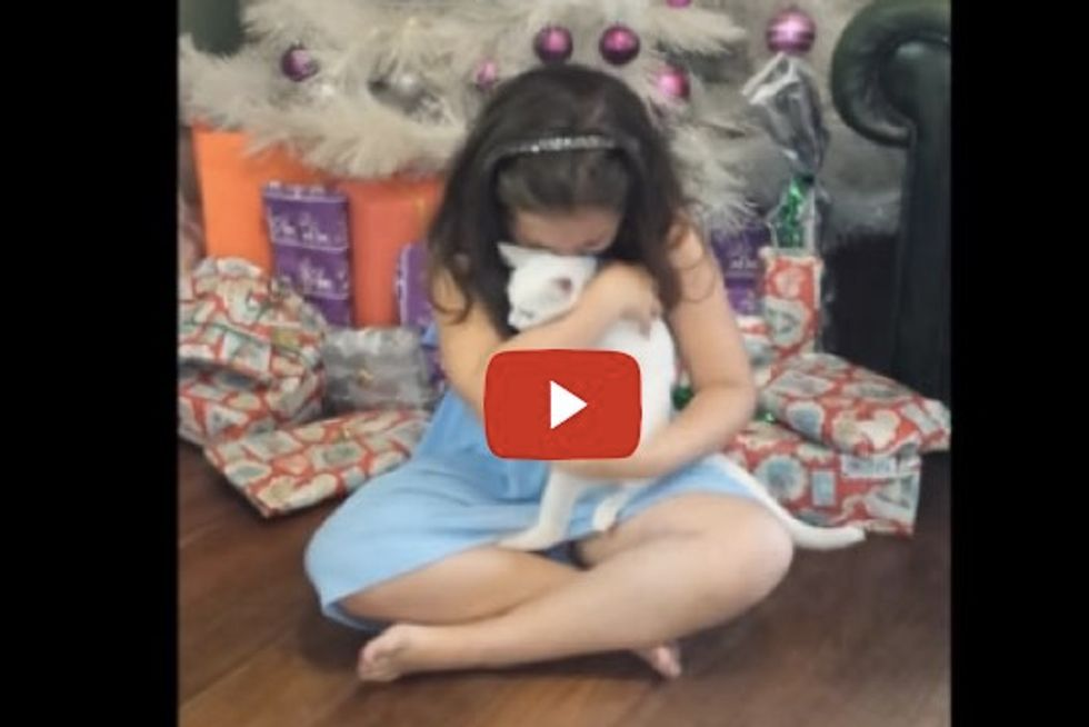 Little Girl's Reaction When Told She Can Keep Her Foster Kitten - Get Your Tissues Ready!